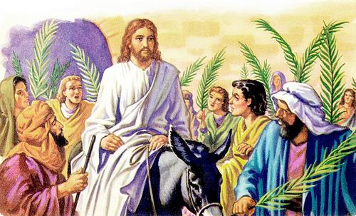Palm Sunday Donkey Palm Sunday | Unashamed of