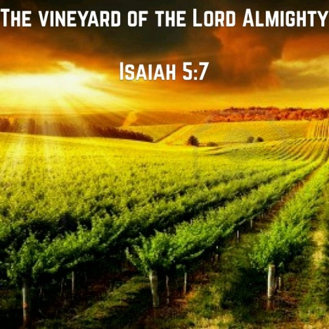 Image result for Working in the Lord's vineyard