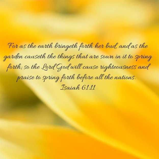 Beauty Of Christ Unashamed Of Jesus
